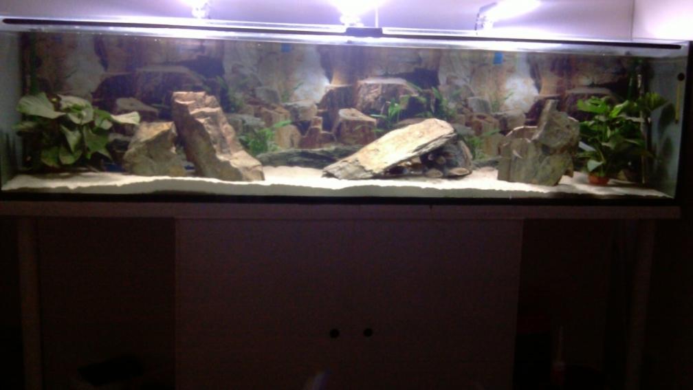 aquarium sur mesure nord