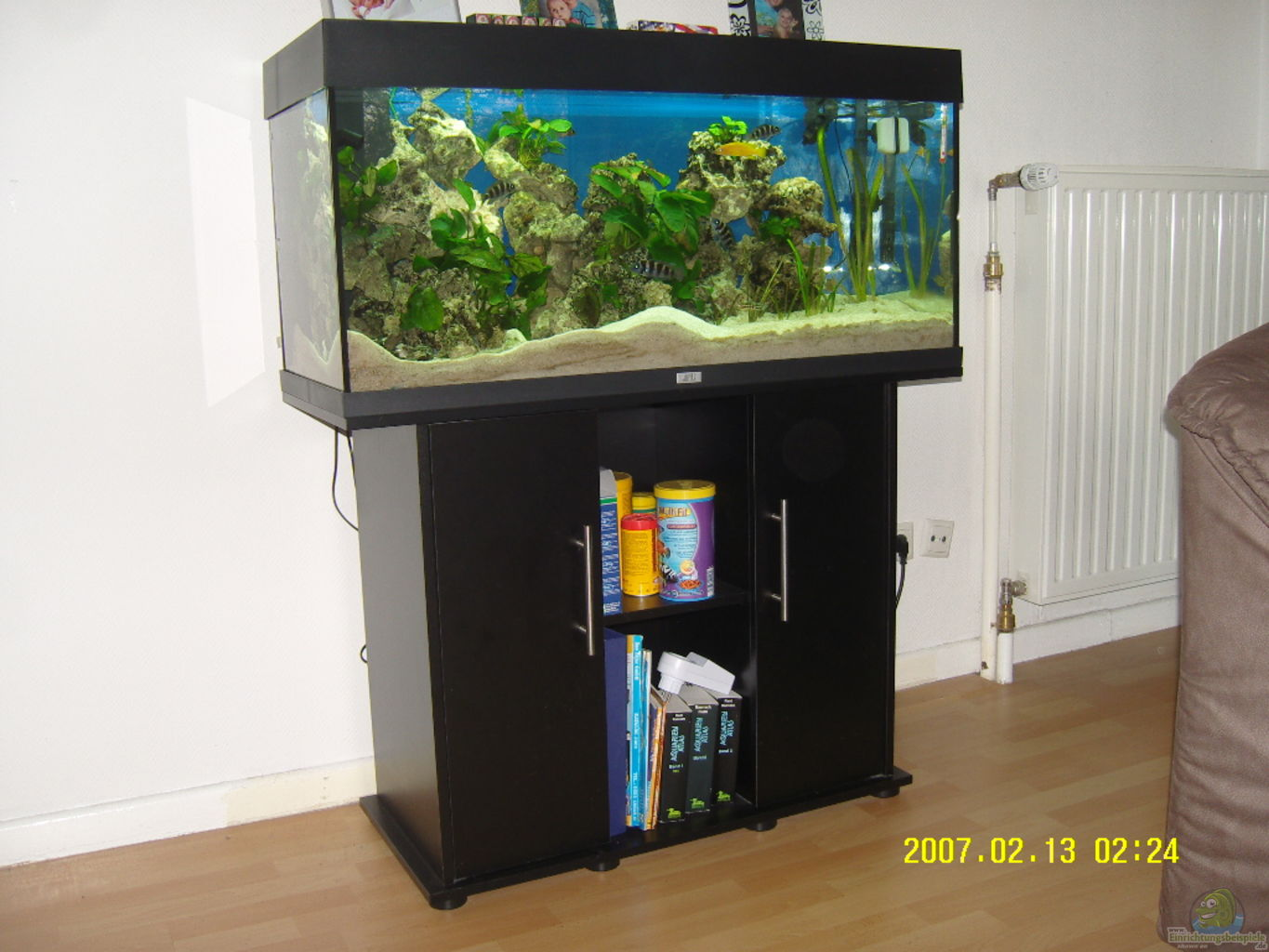 Example no 16039 from the category lake tanganyika for Aquarium 200l