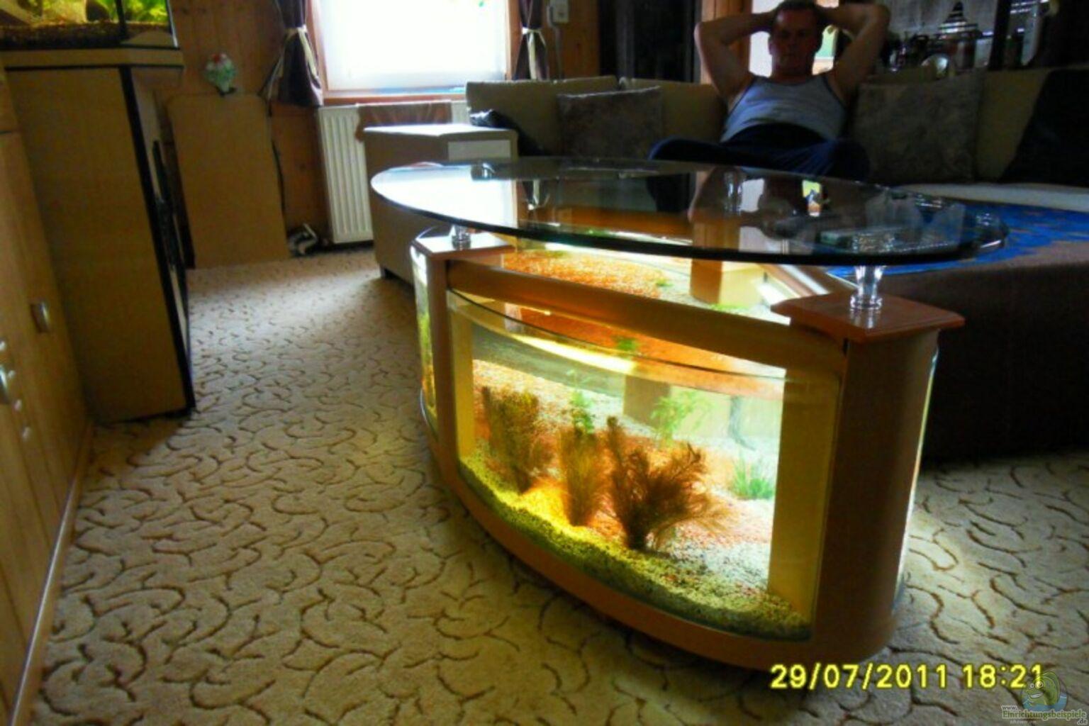 tisch aquarium gebraucht design