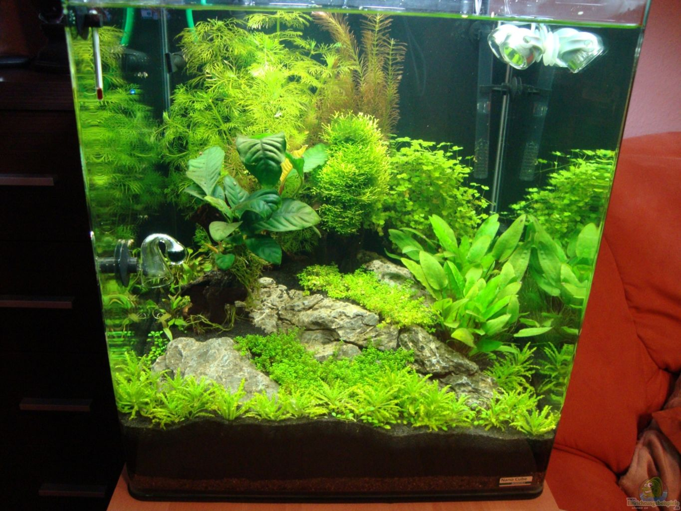 Aquarium nano cube 60l images for Aquarium nano cube