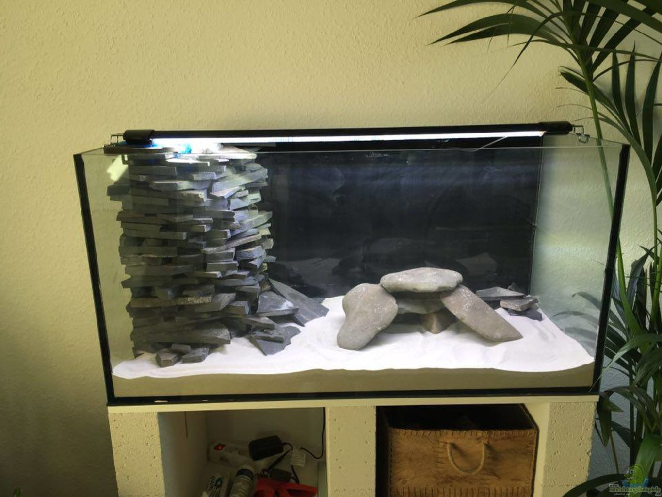 Aquarium Unterschrank Ikea Expedit ~ Example No 31559 from the category lake malawi
