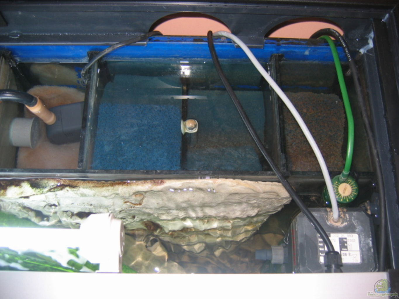 Example no 4270 from the category lake malawi for Aquarium heizung